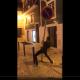 Jovem rouba sinal de trânsito Leiria