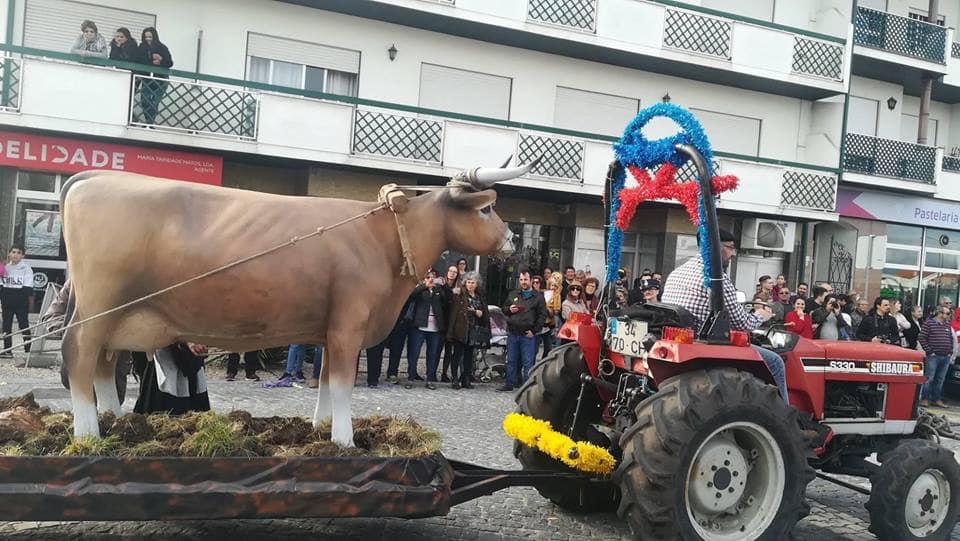 Carnaval Vieira de Leiria