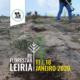 ReFlorestar Leiria Leiria Run