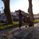 Leiria Polis Mulher