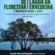 Reflorestacao Lagoa Ervideira 7 marco