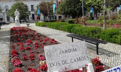 Jardim Luís de Camões Covid-19