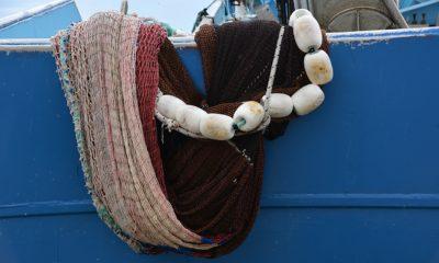 Pescador Rede