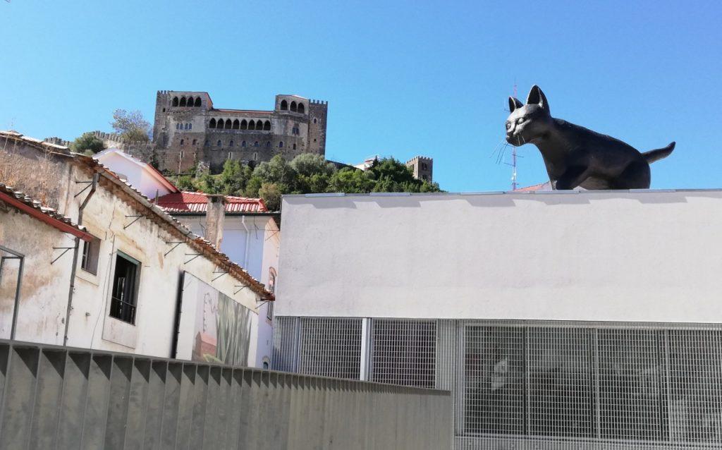 Castelo Leiria Gato Preto