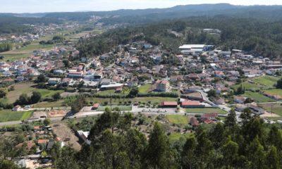 Caranguejeira