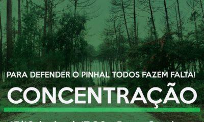 Concentração Pinhal É Nosso 15 out