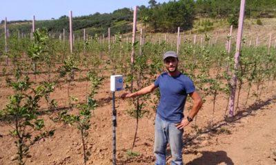 Agricultor Cristóvão Ferreira