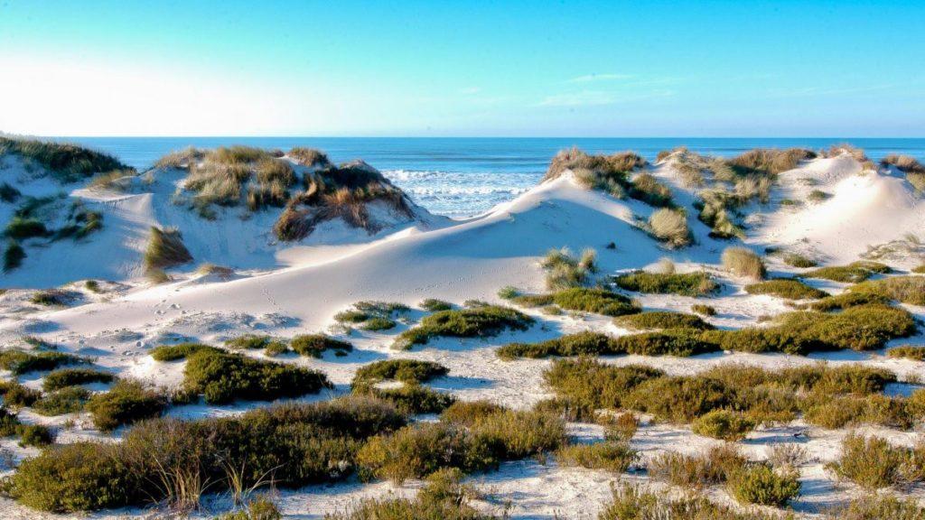 Praia Osso Baleia Pombal