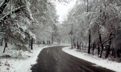 Estrada Neve Castanheira de Pera
