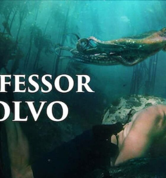 Filme O meu Professor polvo