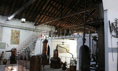 Museu Vinho Alcobaça